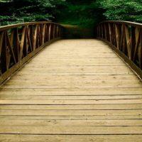 Bridges, I